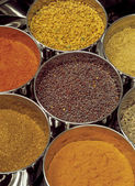Masala box — Stock Photo