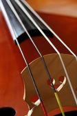 Double bass bridge — Stock Photo
