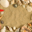 Seashell frame - Stock Photo