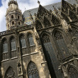 St. Stephens cathedral in Vienna — Stock Photo