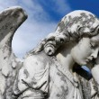 Forlorn angel - Stock Photo