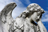 Forlorn angel — Stock Photo