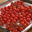 Roasted cherry tomatoes — Stock Photo