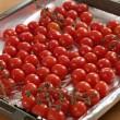 Roasted cherry tomatoes — Stock Photo