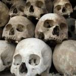 Skulls — Stock Photo #3909321