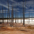 Barren Yellowstone — Stock Photo