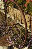 Flower Wheel — Стоковое фото