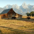 Barn And Grand Teton National Park — Stock Photo