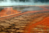 Yellowstone Goes Orange — Stockfoto