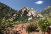 Red Rock Canyon Valley — Stock Photo