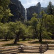 Glorious Yosemite National Park — Stock Photo