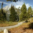 Grand Teton Freedom Path — Stock Photo