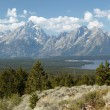 Tranquility Of Grand Teton — Stock Photo