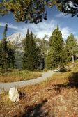 Grand Teton Freedom Path — Stock Photo