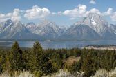 Majesty of Grand Teton — 图库照片