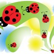 Stock Vector: Ladybird in garden
