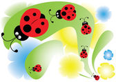 Ladybird in the garden — Stock Vector