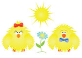 Chickens and sun — Stock Vector