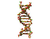 DNA made from apples — Stock Photo