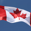 Canadian Flag — Stock Photo #3049272