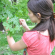 Young girl explores nature — Stock Photo #3200458