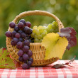 Grapes in small basket — Stock Photo