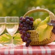 Royalty-Free Stock Photo: Wine and grape