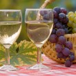 Wine and grape — Stock Photo #3055905