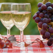 wine and grape — Stock Photo