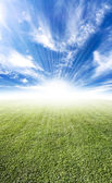 Beautiful sun flare meadow horizon — Stock Photo