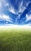 Lindo prado — Fotografia Stock