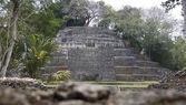 Lamanai tapınağı — Stok fotoğraf