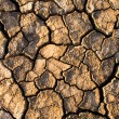 Stockfoto: Soil in fissures