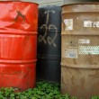 Old Chemical Barrels in Clover — Stock Photo