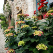 Summer in mediterranian village - Stock Photo