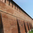 Стена кремля, Kremlin Wall — Stock Photo