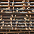 Iron bars - Stock Photo