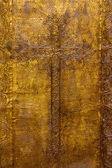 Golden plated church door — Stock Photo