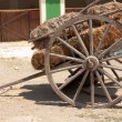 Cart with hay — Stock fotografie