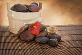 Spa setting with stones and shells — Stock Photo