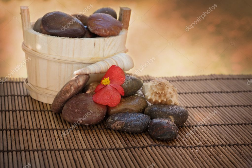Spa setting with wet stones and shells. — Stock Photo #3897064
