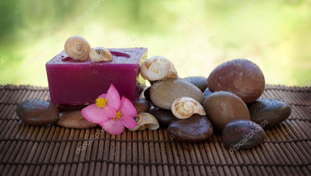 Spa setting with wet stones and shells. — Stock Photo #3897069