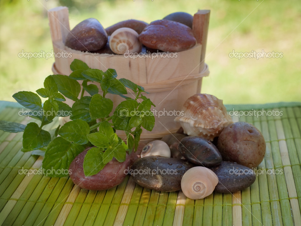 Spa setting with wet stones and shells. — Stock Photo #3897084