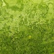 Background green rough organic texture — Stock Photo