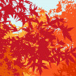 Стоковое фото: Colorful landscape of automn foliage - Vector illustration