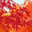 Colorful landscape of automn foliage - Vector illustration - Stock Photo