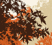 Colored landscape of automn brown foliage - Vector illustratio — Stock Photo