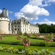 Chenonceaux Castle - Stock Photo