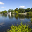 Stavanger Pond - Stock Photo