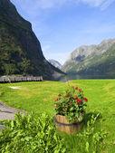 Naeroyfjord Scenic — Stock Photo